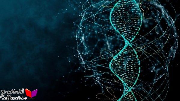 PCR چیست ، کاربردPCR چیست؟