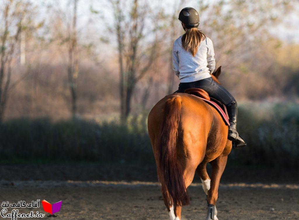 مقاله کامل در مورد اسب