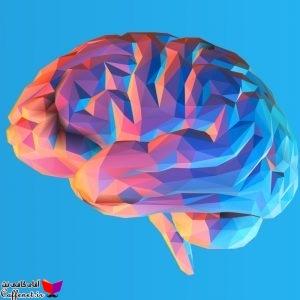 سمینار حافظه و یادگیری